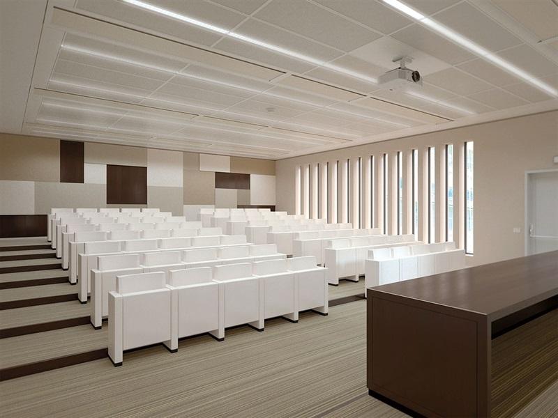 panel-acustico-para-sala-de-conferencias-caruso-lamm